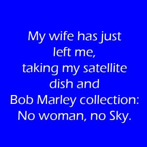 My-wife-has-just-left-me-taking-my-satellite